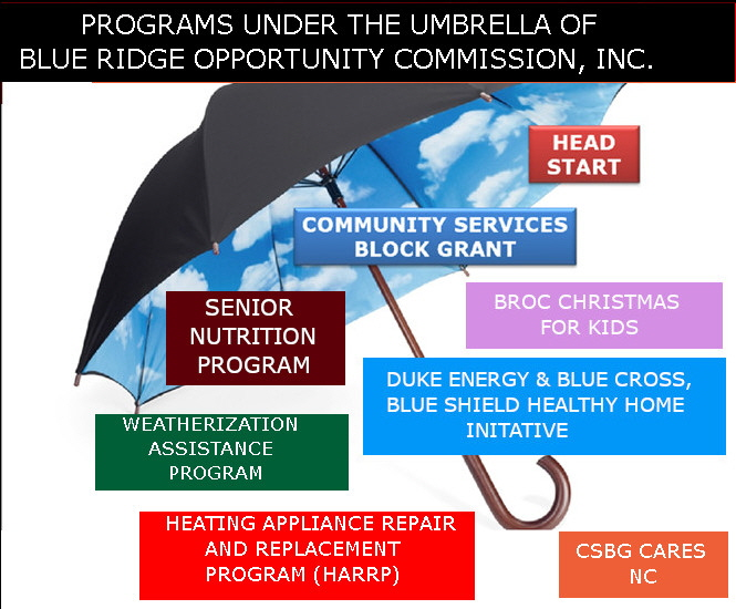 Umbrella of BROC3